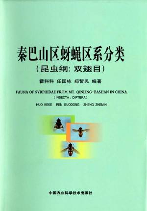 Syrphidae_qinling001
